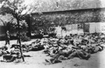 уничтоженные-жители-лидицы-мини